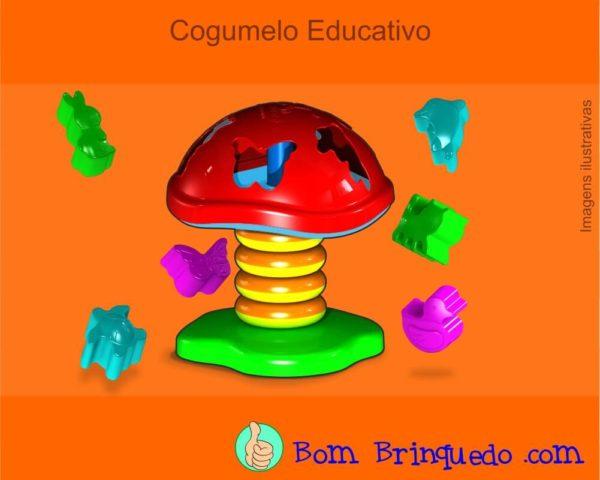 cogumelo-educativo-carimbras